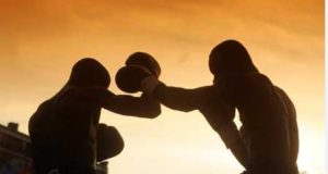 boxe_clarus