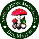 associazione-micologica-del-matese